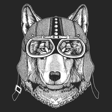 Wolf Vintage motorcycle hemlet. Retro style illustration with animal biker for children, kids clothing, t-shirts. Fashion print with cool character. Speed and freedom.