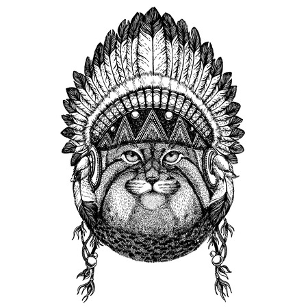 Manul, cat. Wild animal wearing indian headdress with feathers. Foto de archivo - 117923042