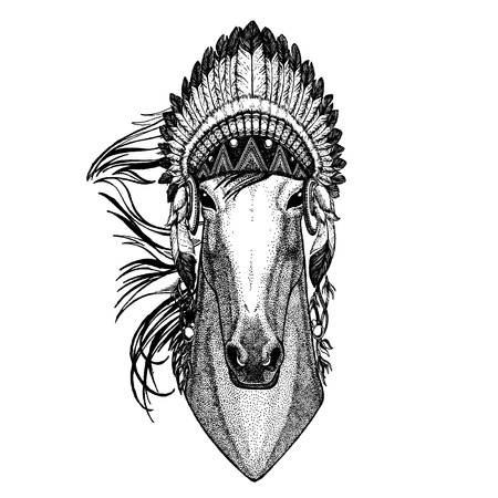 Horse Wild animal wearing indian headdress with feathers.