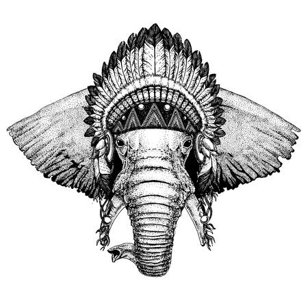 Elephant. Zoo. Wild animal wearing indian headdress with feathers.
