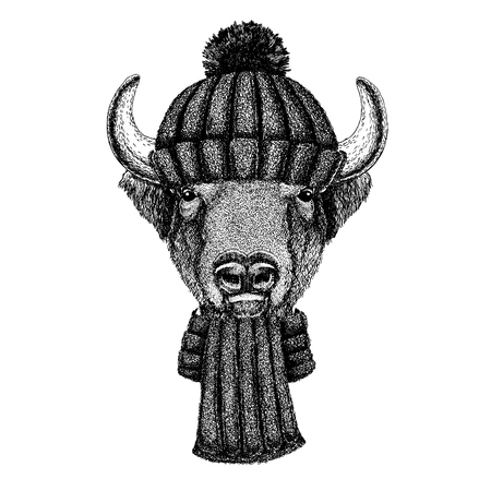 Buffalo, bison,ox, bull Cool animal wearing knitted winter hat. Warm headdress beanie Christmas cap for tattoo, t-shirt, emblem, badge, patch Illustration