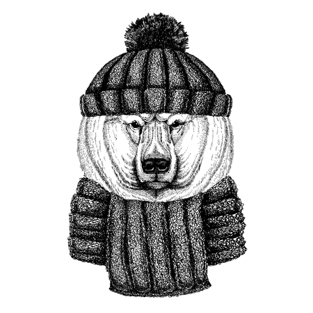 Big polar bear, White bear Cool animal wearing knitted winter hat. Warm headdress beanie Christmas cap for tattoo, t-shirt, emblem, badge, patch