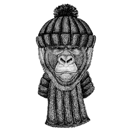Gorilla, monkey, ape Cool animal wearing knitted winter hat. Warm headdress beanie Christmas cap for tattoo, t-shirt, emblem, badge, patch