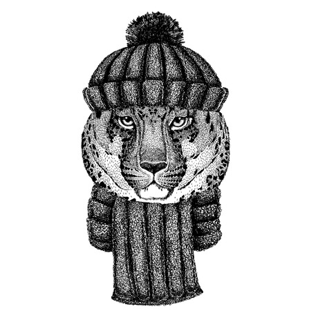 Wild cat Leopard Cat-o-mountain Panther Cool animal wearing knitted winter hat. Warm headdress beanie Christmas cap for tattoo, t-shirt, emblem, badge,  patch
