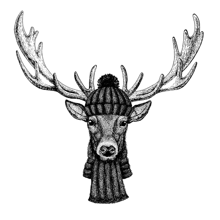 Deer Cool animal wearing knitted winter hat. Warm headdress beanie Christmas cap for tattoo, t-shirt, emblem, badge, patch