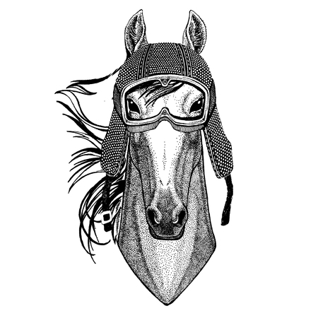 Animal wearing motorcycle helmet. Image for kindergarten children clothing, kids. T-shirt, tattoo, emblem, badge, patch Illustration