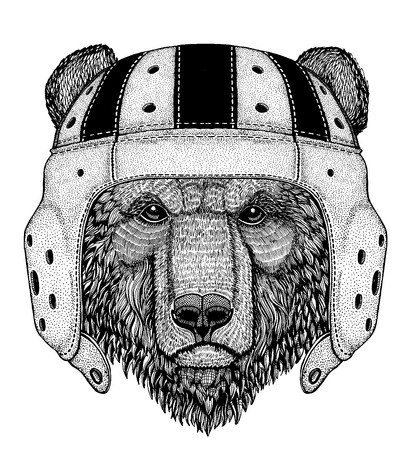 Cool animal wearing rugby helmet Extreme sport game Brown bear Russian bear Hand drawn image for tattoo, t-shirt, emblem, badge, patch Illustration