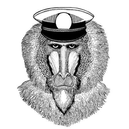 Wild animal wearing capitan hat Stock Vector - 124886299