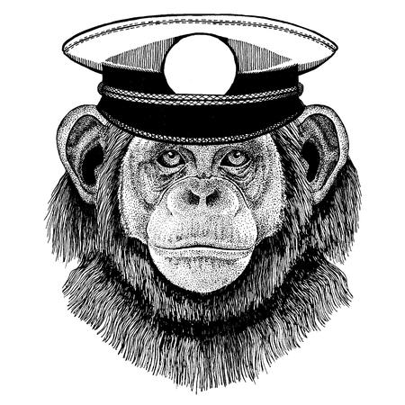 Wild animal wearing capitan hat Stock Vector - 124886301