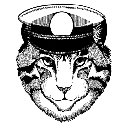 Image of domestic cat Hand drawn illustration for tattoo, emblem, badge, patch, t-shirt
