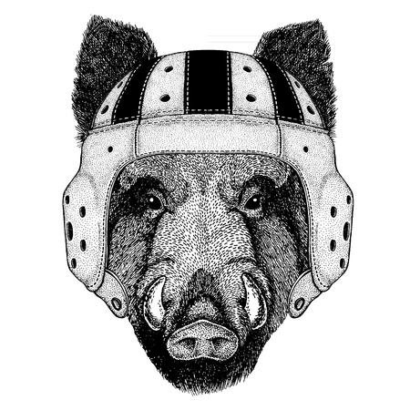 Cool animal wearing rugby helmet Extreme sport game Aper, boar, hog, wild boar Hand drawn image for t-shirt, tattoo emblem badge patch