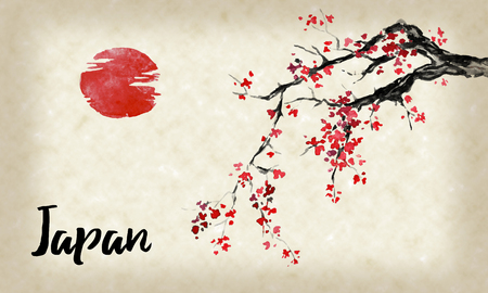 Japan traditional sumi-e painting. Sakura, cherry blossom. Indian ink illustration. Japanese picture. Imagens