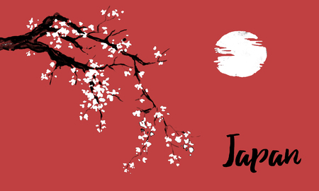 Japan traditional sumi-e painting. Sakura, cherry blossom. Indian ink illustration. Japanese picture. Фото со стока