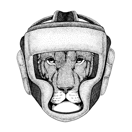 Boxer animal. Vector illustration for t-shirt. Sport, fighter isolated on white background. Fitness illustration of strong person