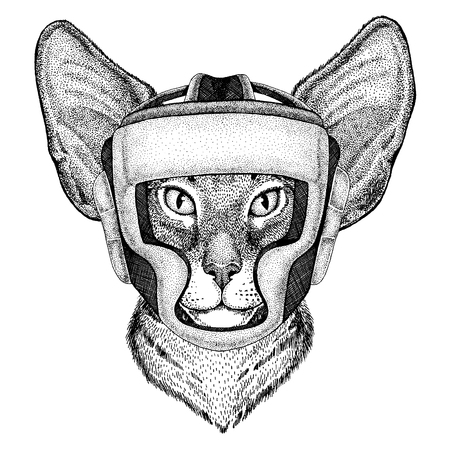 Oriental cat with big ears Hand drawn image for tattoo, emblem, badge, logo, patch