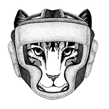 Image of domestic cat Hand drawn illustration for tattoo, emblem, badge, logo, patch, t-shirt
