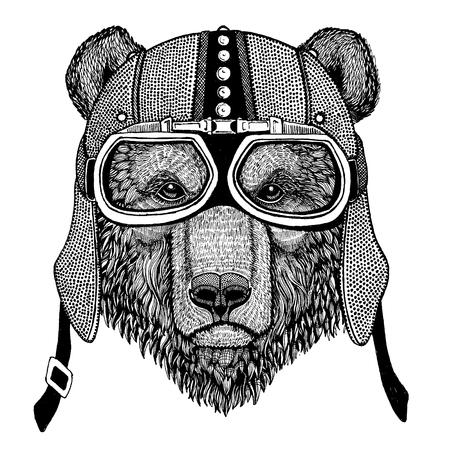 Brown bear Wild animal wearing motorcycle, aero helmet. Biker illustration for t-shirt, posters, prints. Illustration