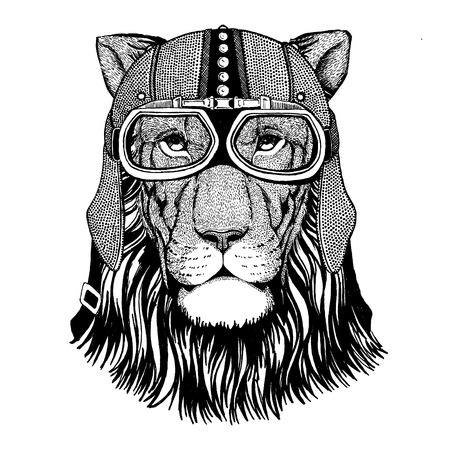 Lion wearing motorcycle, aero helmet. Biker illustration for t-shirt, posters, prints.