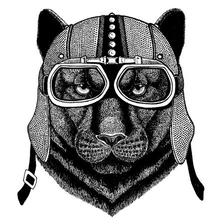 Panther, Puma, Cougar, Wild cat wearing motorcycle, aero helmet. Biker illustration for t-shirt, posters, prints. Stock Illustratie