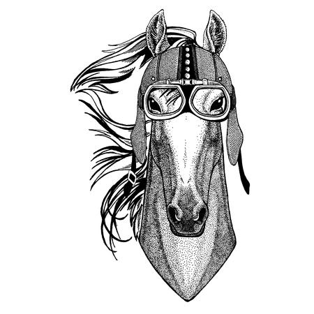 Horse, hoss, knight, steed, courser wearing motorcycle, aero helmet. Biker illustration for t-shirt, posters, prints. Foto de archivo - 118919675