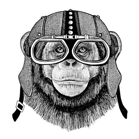 Animal wearing motorcycle, aero helmet. Biker illustration for t-shirt, posters, prints.