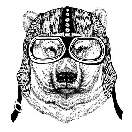 Polar white bear Animal wearing motorcycle, aero helmet. Biker illustration for t-shirt, posters, prints. Illustration