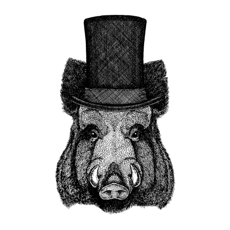 Wild animal wearing top hat, cylinder. Hipster Illustration