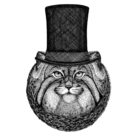 Wild animal wearing top hat, cylinder. Hipster 일러스트