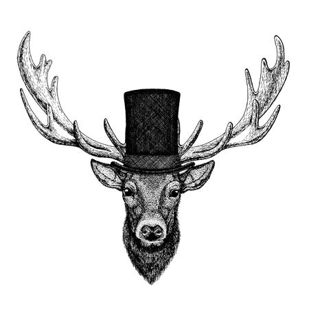 Animale selvatico con cappello a cilindro, cilindro. Cervo hipster Vettoriali