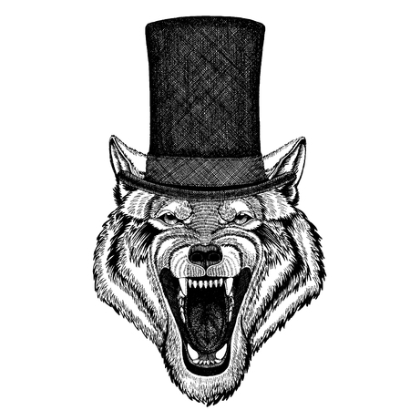 Wild animal wearing top hat, cylinder. Hipster Illustration