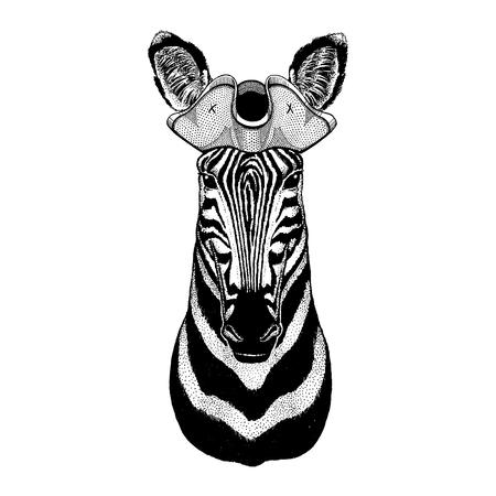Zebra, horse wearing pirate tricorn hat. Capitan costume. Stock fotó - 118920086