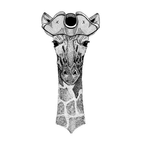 Camelopard, giraffe wearing pirate tricorn hat. Capitan costume.