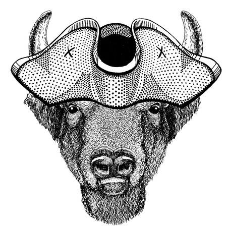 Buffalo, bison,ox, bull wearing pirate tricorn hat. Capitan costume.