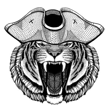 Tiger wearing pirate tricorn hat. Capitan costume. Illustration