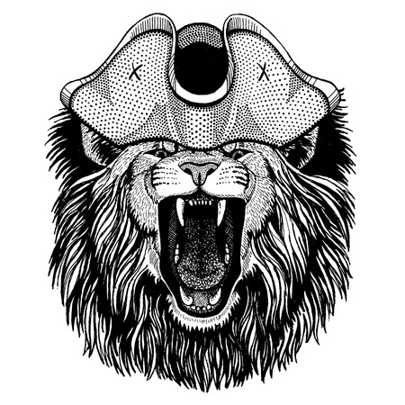 Lion wearing pirate tricorn hat. Capitan costume. Illusztráció