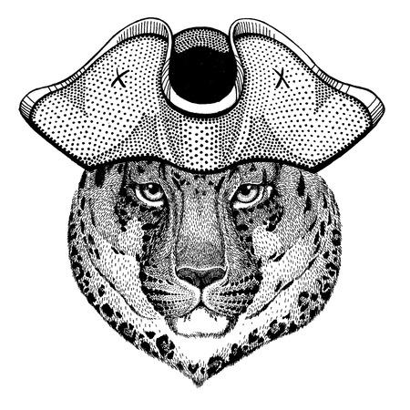 Wild cat, jaguar, leopard, panther wearing pirate tricorn hat. Capitan costume. Illusztráció