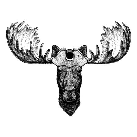 Moose, elk wearing pirate tricorn hat. Capitan costume.
