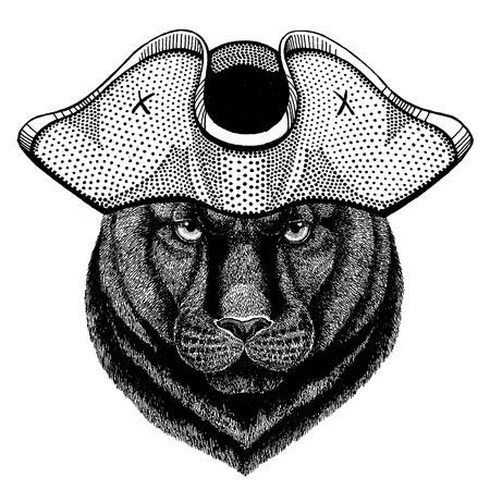 Panther Puma Cougar Wild cat