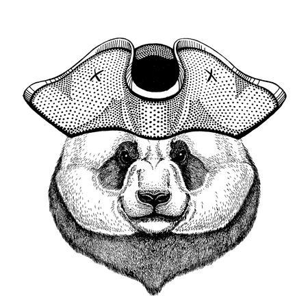Panda, bamboo bear