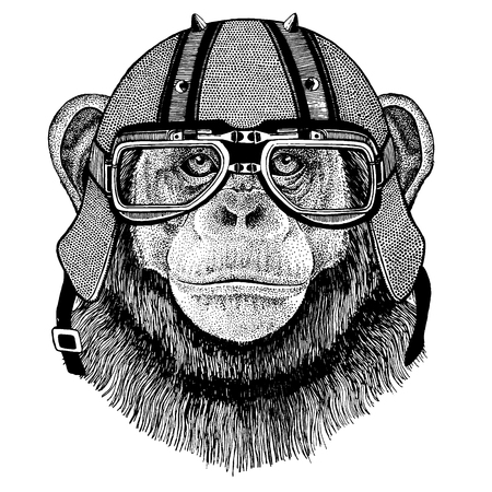 Chimpanzee, monkey wearing a motorcycle, aero helmet. Illustration