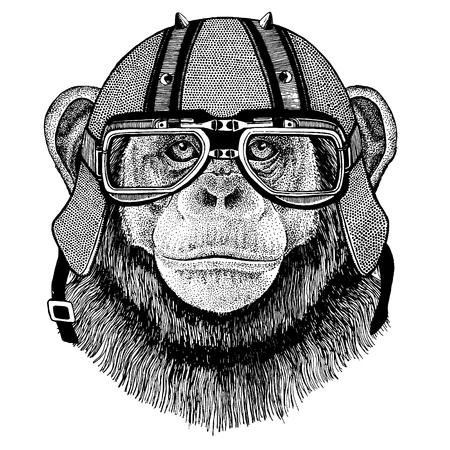 Chimpanzee, monkey wearing a motorcycle, aero helmet. Illustration