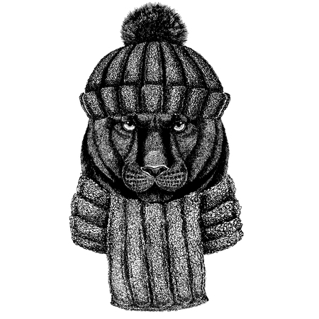 Animal in winter clothing