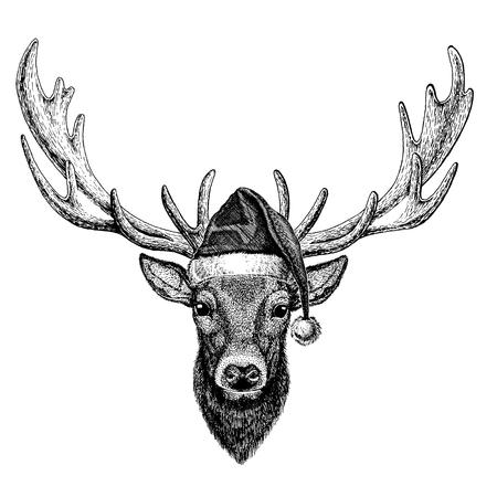 Deer wearing christmas Santa Claus hat.