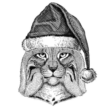 Wild cat wearing christmas Santa Claus hat.