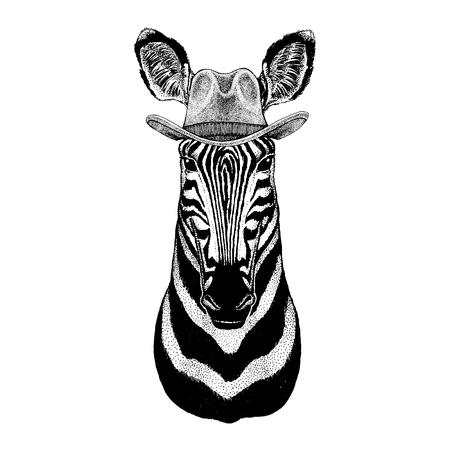 Zebra, horse wearing cowboy hat. Wild west animal. Illustration