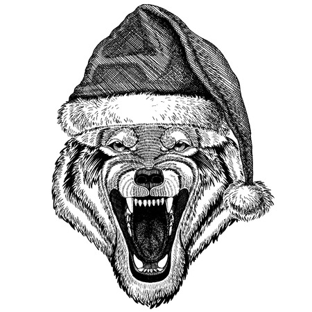 Wolf, dog wearing christmas Santa Claus hat.