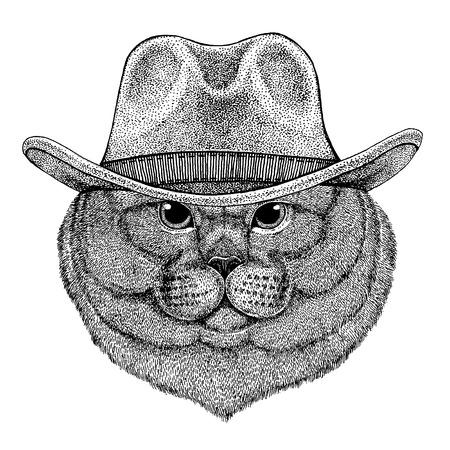 Cat wearing cowboy hat. Wild west animal.