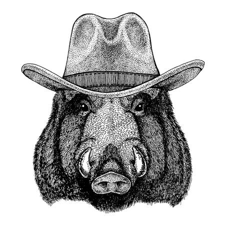 Aper, boar, hog, wild boar wearing cowboy hat.