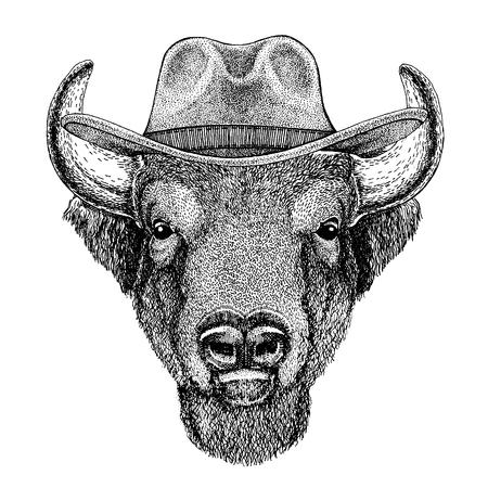 Buffalo, bisonte, bue, toro con cappello da cowboy. Animale del selvaggio west.