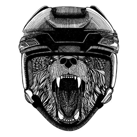 Bear, animal wearing hockey helmet. Hand drawn image of lion for tattoo, t-shirt, emblem, badge, logo, patch. Illustration